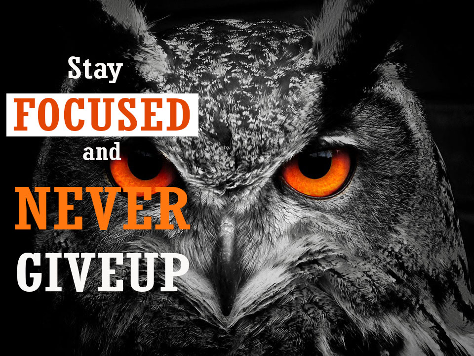 focused-never-giveup-motivational-quotes